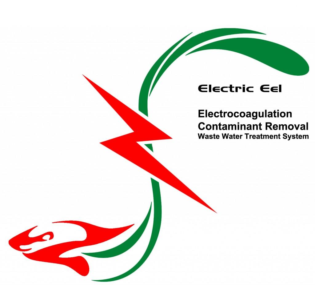 Electric Eel - LOGO V2